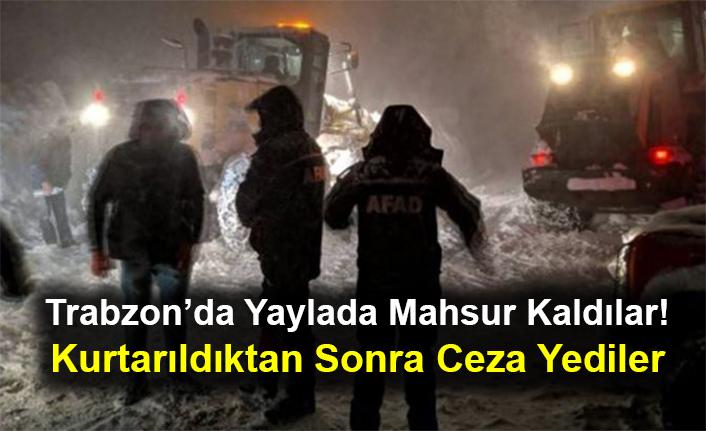 Trabzon'da Yaylada Mahsur Kaldılar! Kurtarıldıktan Sonra Ceza Yediler