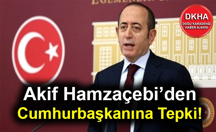 Akif Hamzaçebi'den Cumhurbaşkanına Tepki!