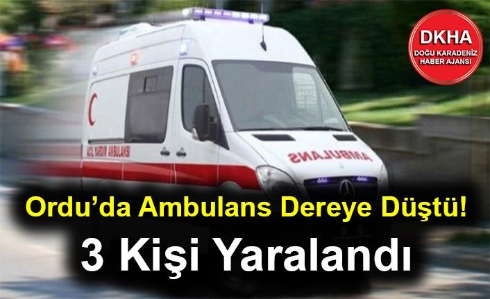 Ordu'da Ambulans Dereye Düştü! 3 Kişi Yaralandı