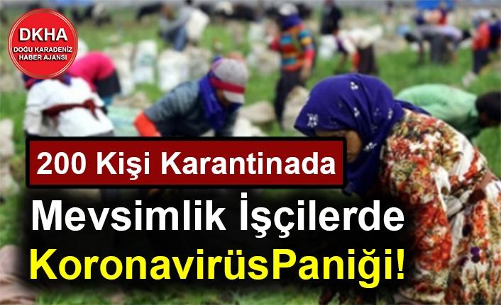 Mevsimlik İşçilerde Koronavirüs Çıktı! 200 Kişi Karantinada