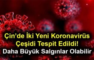 Çin'de İki Yeni Koronavirüs Çeşidi Tespit Edildi!...