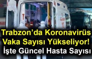 Trabzon'da Koronavirüs Vaka Sayısı Yükseliyor!...