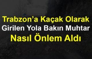 Trabzon'a Kaçak Olarak Girilen Yola Bakın Muhtar...