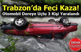 Trabzon'da Feci Kaza! Otomobil Dereye Uçtu 3 Kişi...