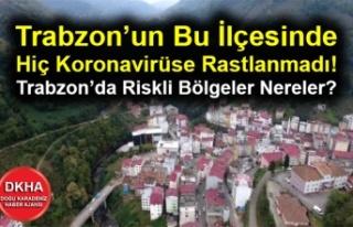 Trabzon'un Bu İlçesinde Hiç Koronavirüse Rastlanmadı!...