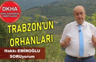 Trabzon'un Orhanları-DKHA