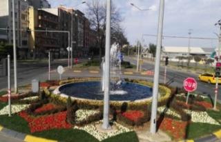 Büyükşehir Trabzon'u Çiçeklerle Donatıyor
