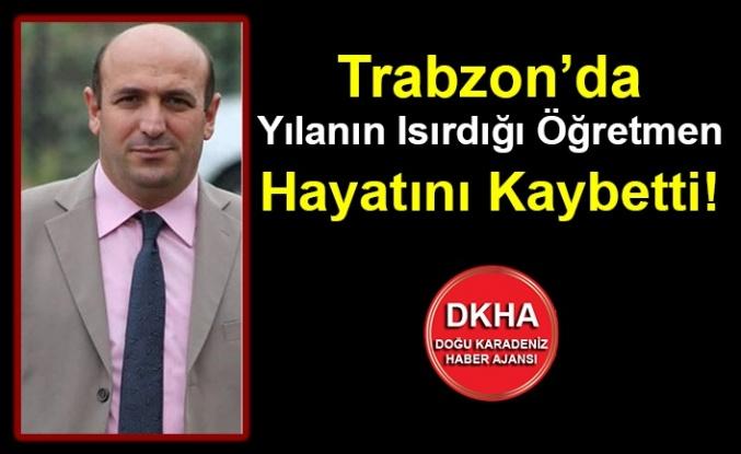 Trabzon'da Yılanın Isırdığı Öğretmen Hayatını Kaybetti!